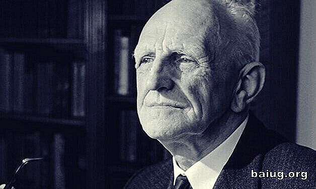 Donald Winnicott și teoria falsă am